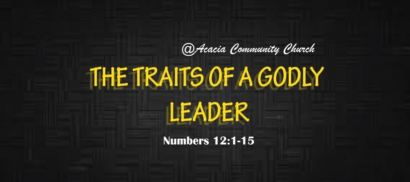 Godly Leader